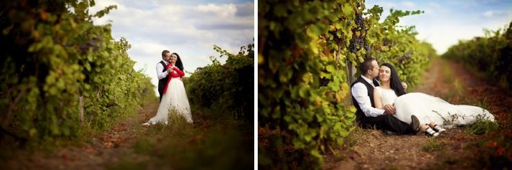 Perfect Day, svadba, Slovensko, Vasa svadba, Stefan, Vitalija, Castel Mierovo_0033