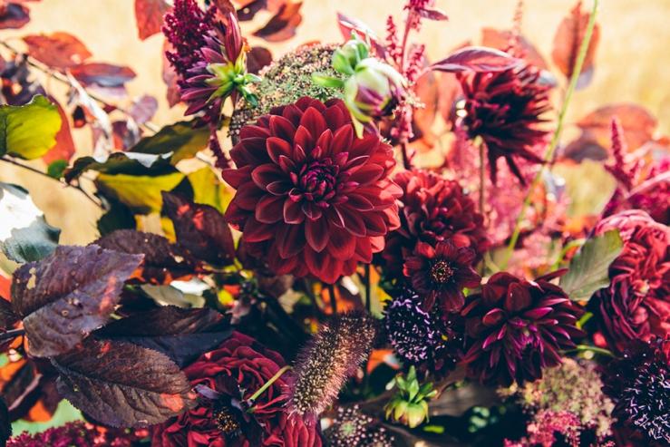 svadba, svadobna inspiracia, slovensko, marsala vervain dalia kvety_0002