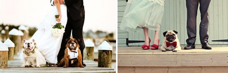 Perfect Day, svadba, slovensko, svadobna inspiracia, host so styrmi nohami_0006