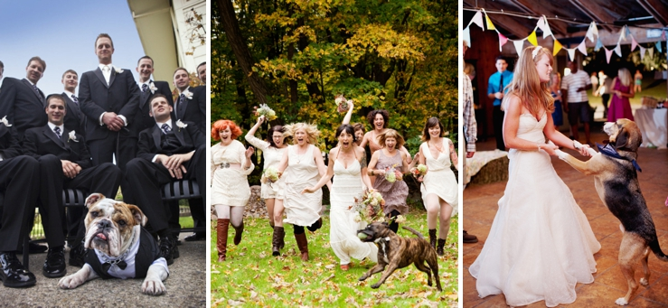 Perfect Day, svadba, slovensko, svadobna inspiracia, host so styrmi nohami_0008