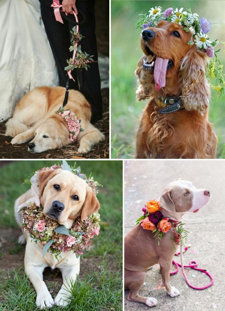 Perfect Day, svadba, slovensko, svadobna inspiracia, host so styrmi nohami_0010