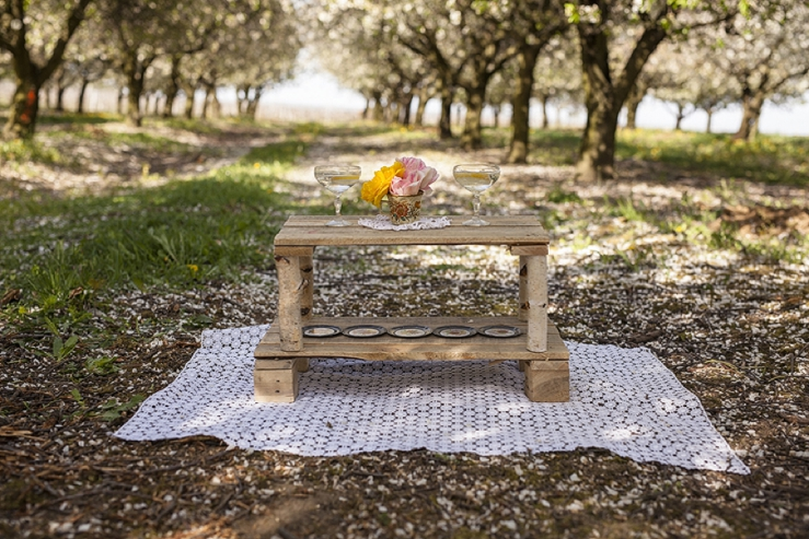 perfect day, svadba, slovensko, svadobna inspiracia, svadbolina, kamarian v sade_0012